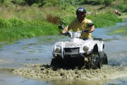 Quad Biking in Marbella - Our Customers Feedback and Comments